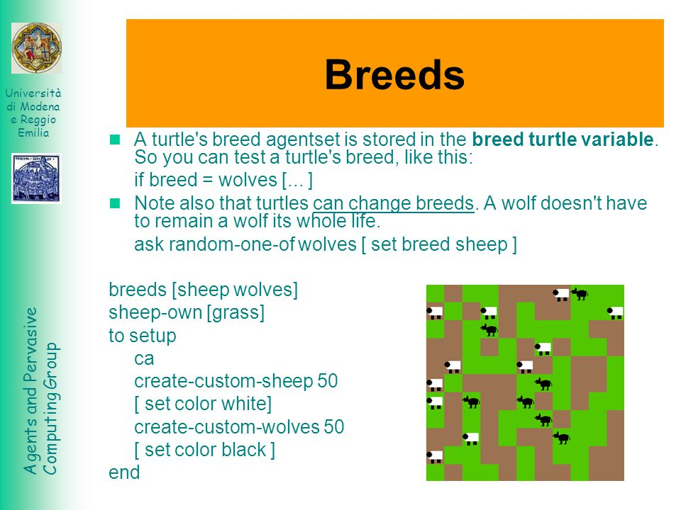 Breeds A turtle s breed agentset is stored in the breed turtle variable. So you can test a turtle s breed, like this: