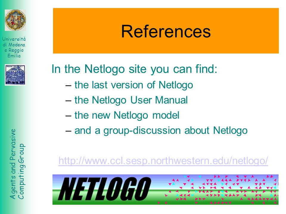 References In the Netlogo site you can find: