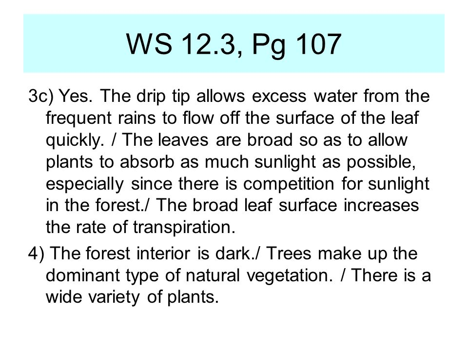 WS 12.3, Pg 107
