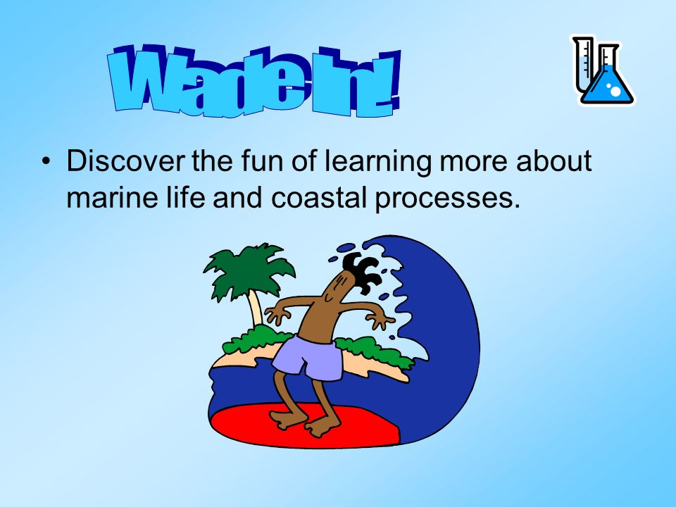Wade In! Discover the fun of learning more about marine life and coastal processes.