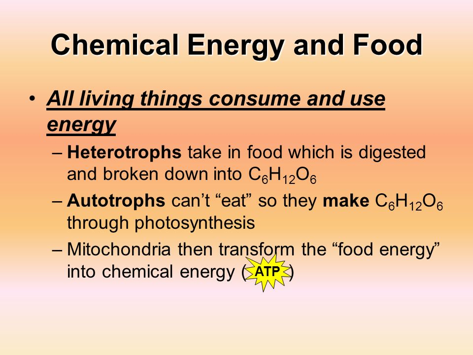 Chemical Energy and Food