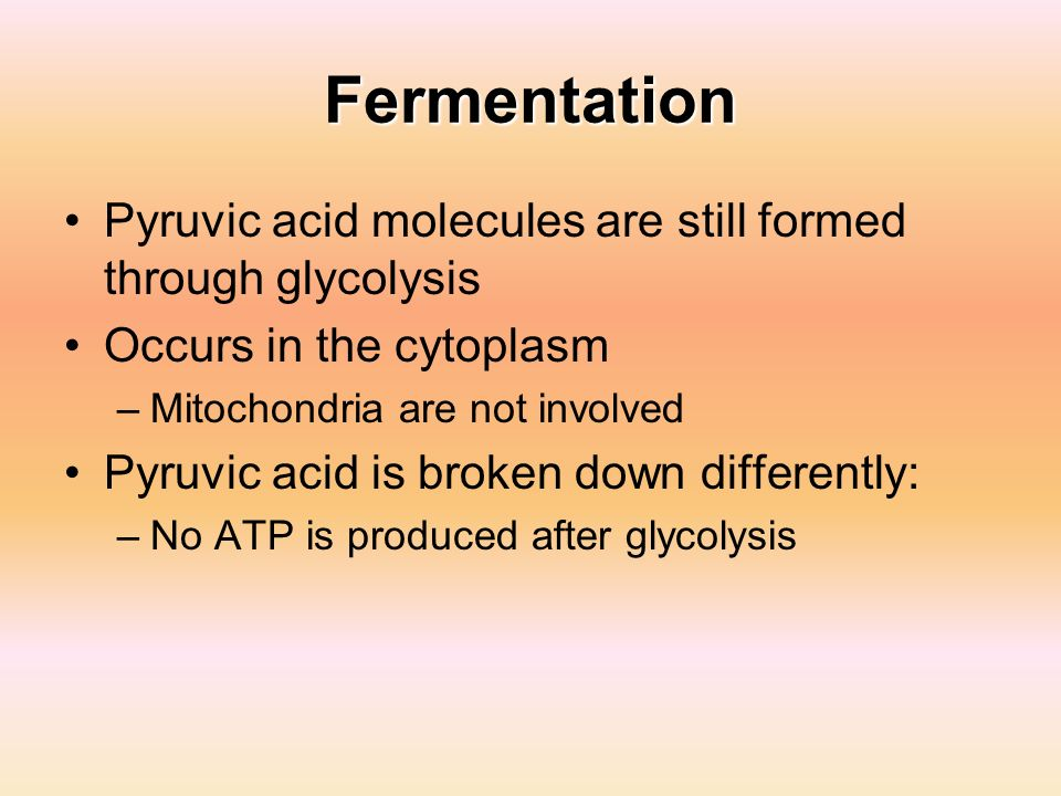 Fermentation Pyruvic acid molecules are still formed through glycolysis. Occurs in the cytoplasm. Mitochondria are not involved.