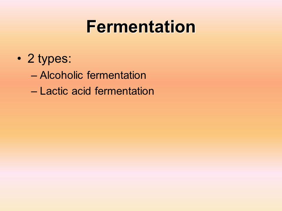 Fermentation 2 types: Alcoholic fermentation Lactic acid fermentation