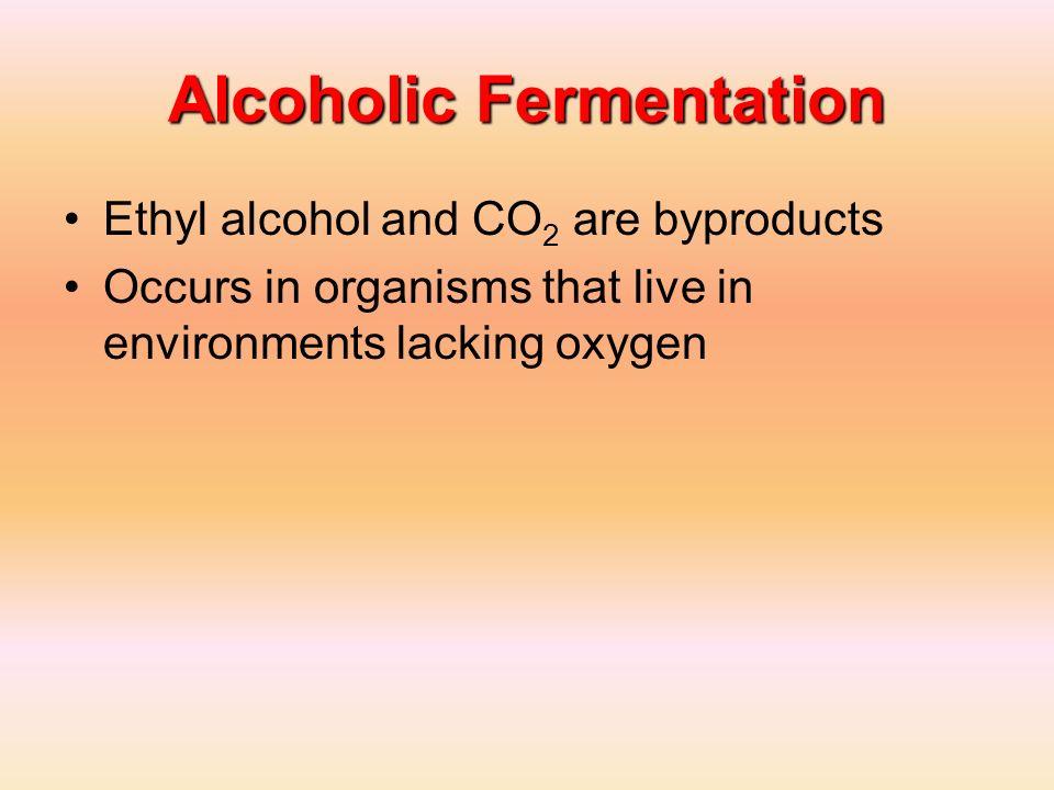 Alcoholic Fermentation