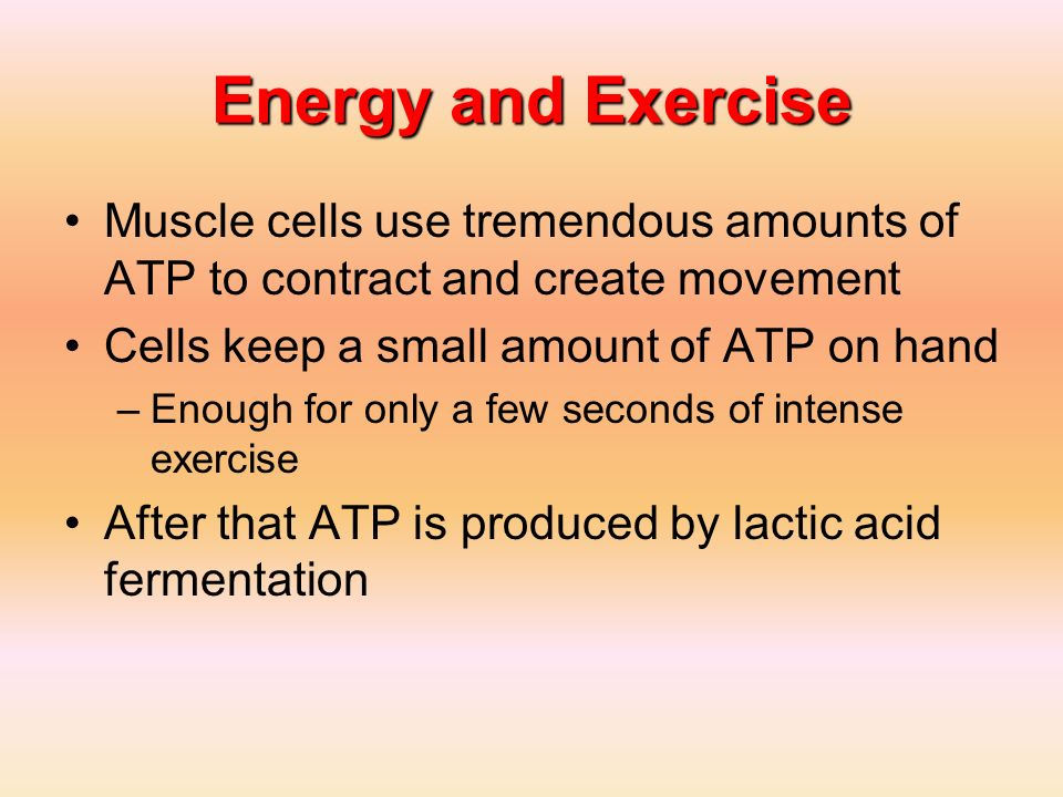 Energy and Exercise Muscle cells use tremendous amounts of ATP to contract and create movement. Cells keep a small amount of ATP on hand.