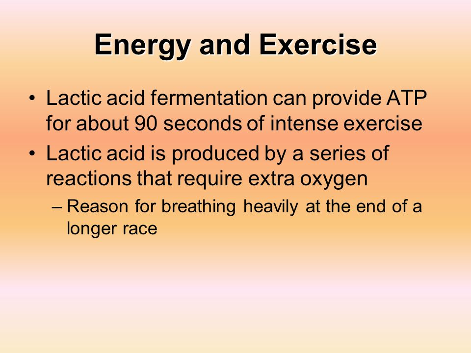 Energy and Exercise Lactic acid fermentation can provide ATP for about 90 seconds of intense exercise.