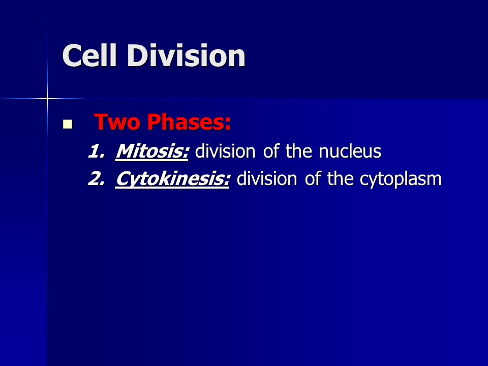 Cell Division Two Phases: Mitosis: division of the nucleus