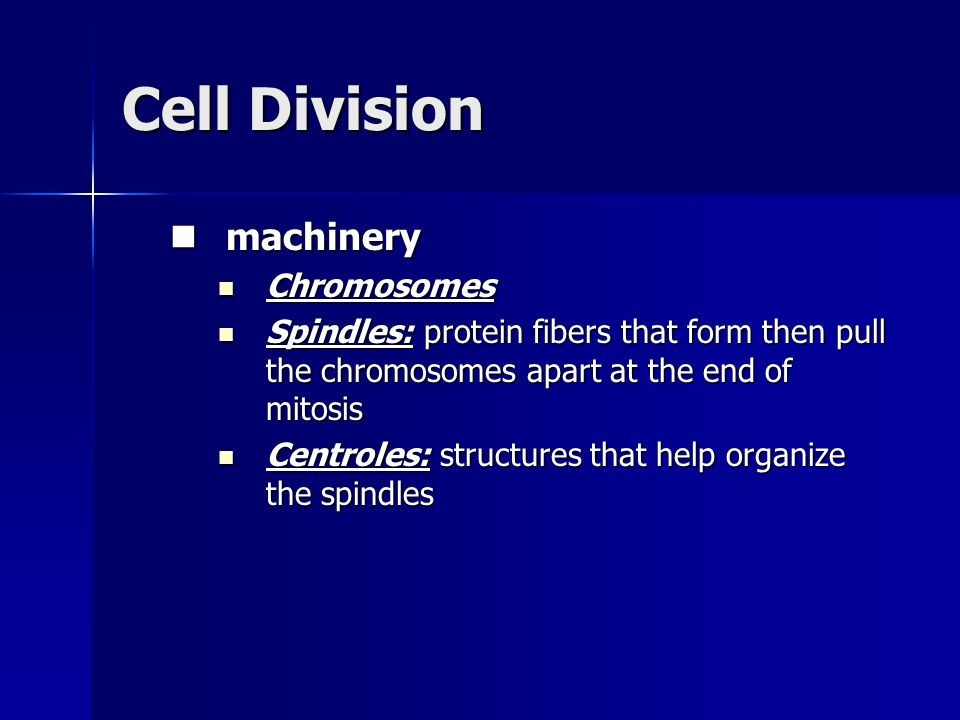 Cell Division machinery Chromosomes