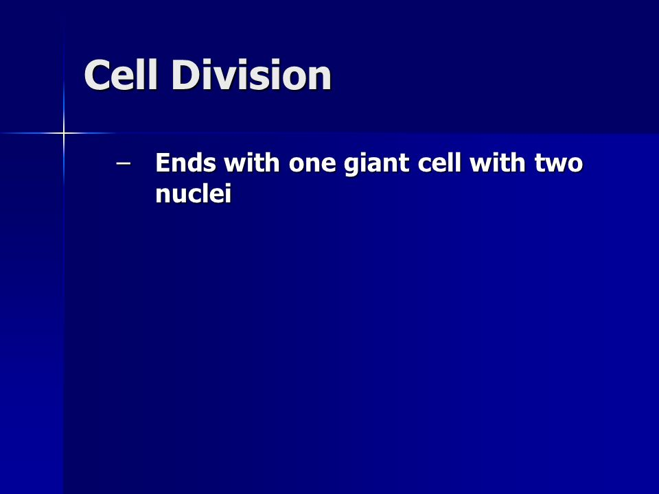 Cell Division Ends with one giant cell with two nuclei