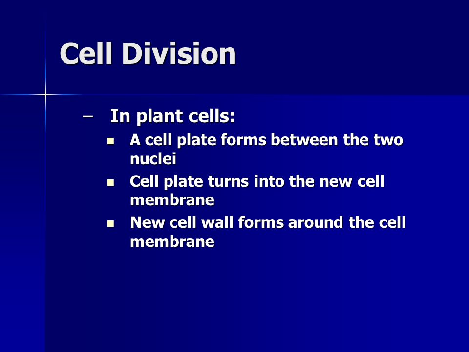 Cell Division In plant cells: