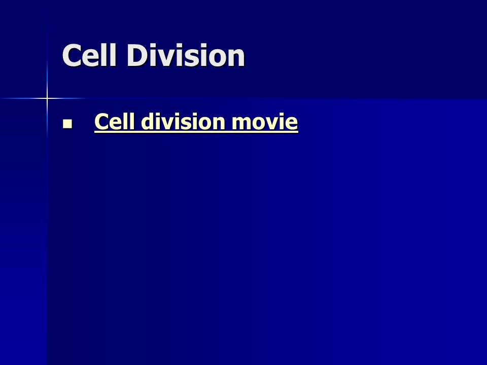 Cell Division Cell division movie