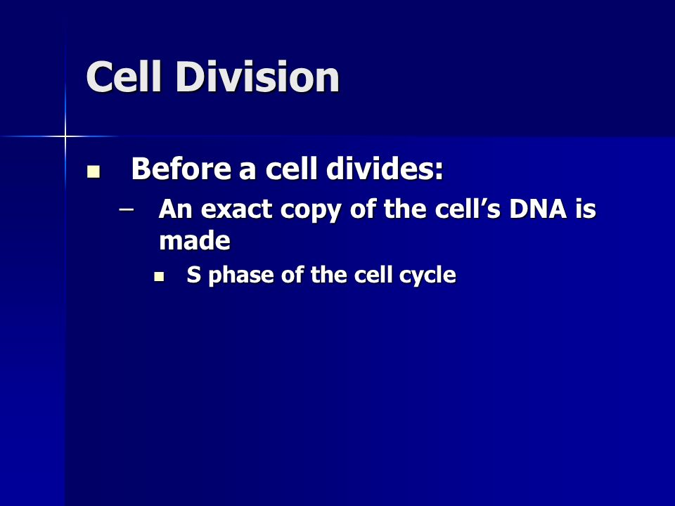Cell Division Before a cell divides: