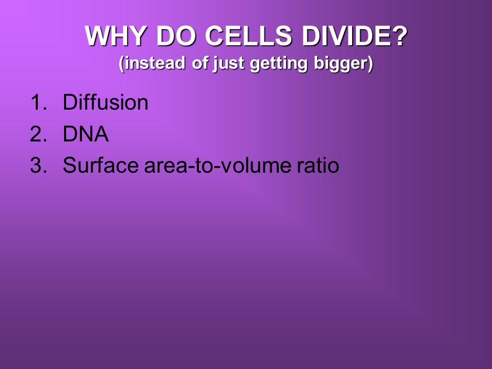WHY DO CELLS DIVIDE (instead of just getting bigger)