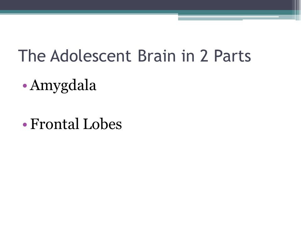The Adolescent Brain in 2 Parts