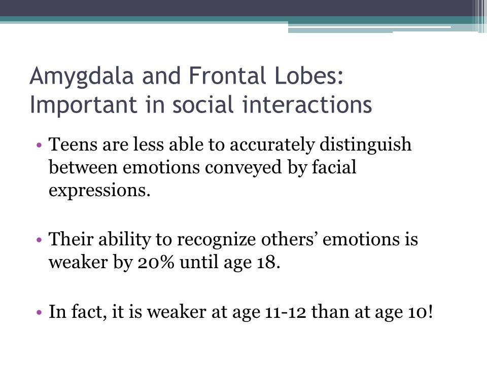 Amygdala and Frontal Lobes: Important in social interactions