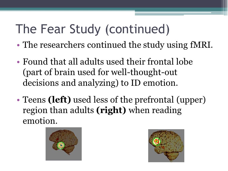 The Fear Study (continued)