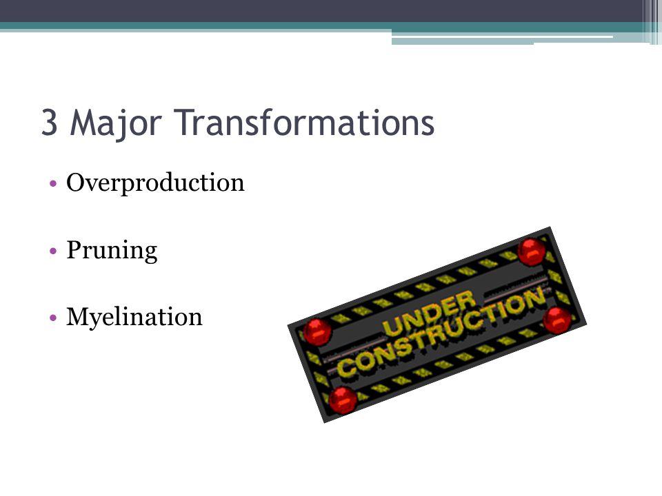 3 Major Transformations