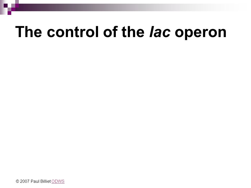 The control of the lac operon