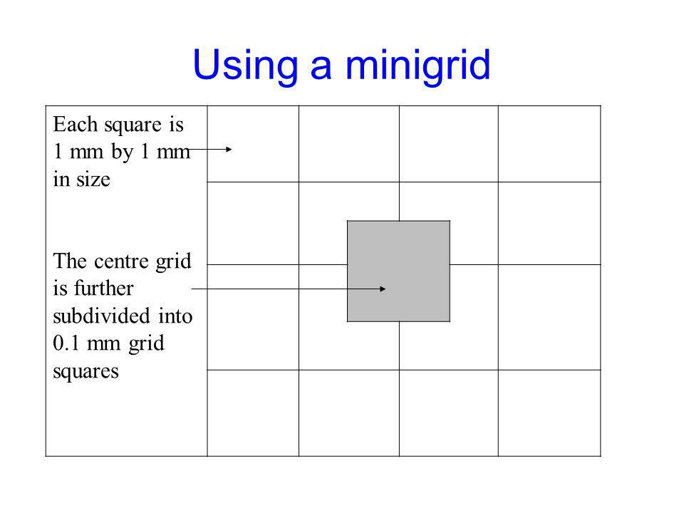 Using a minigrid Each square is 1 mm by 1 mm in size