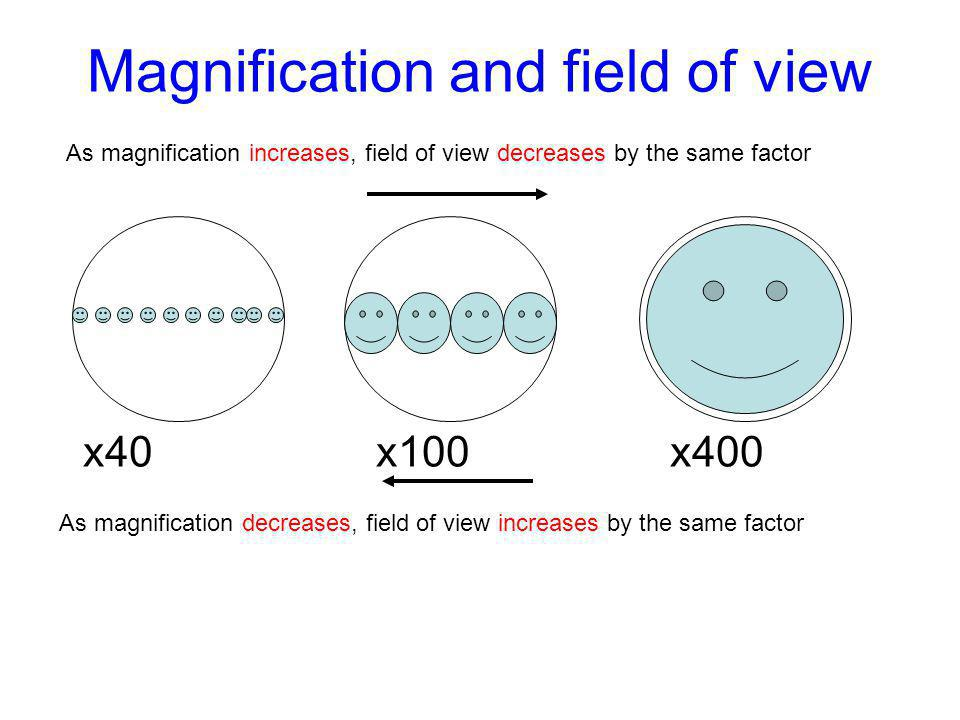 Magnification and field of view