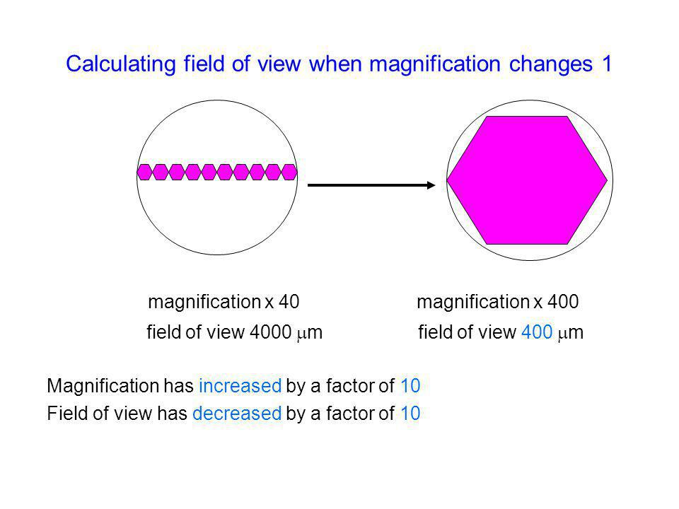 Calculating field of view when magnification changes 1