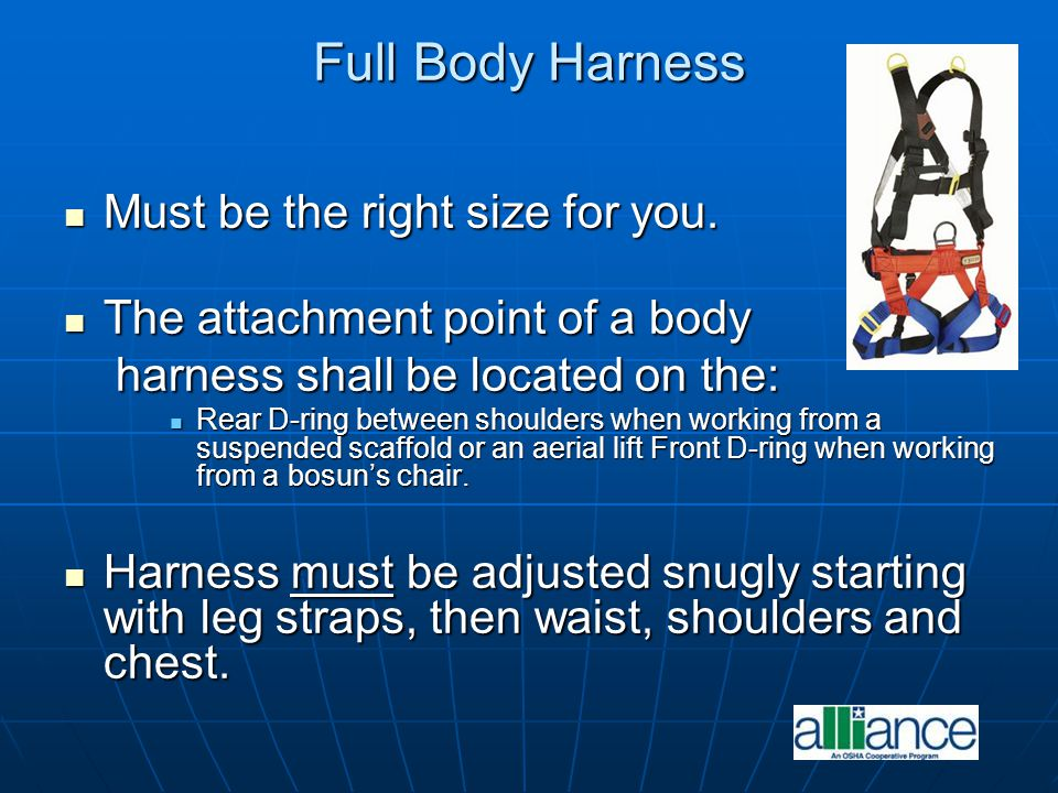 Full Body Harness Must be the right size for you.