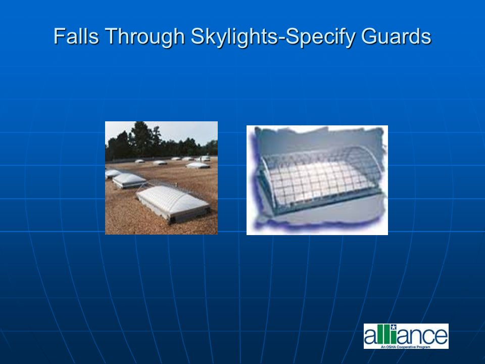 Falls Through Skylights-Specify Guards