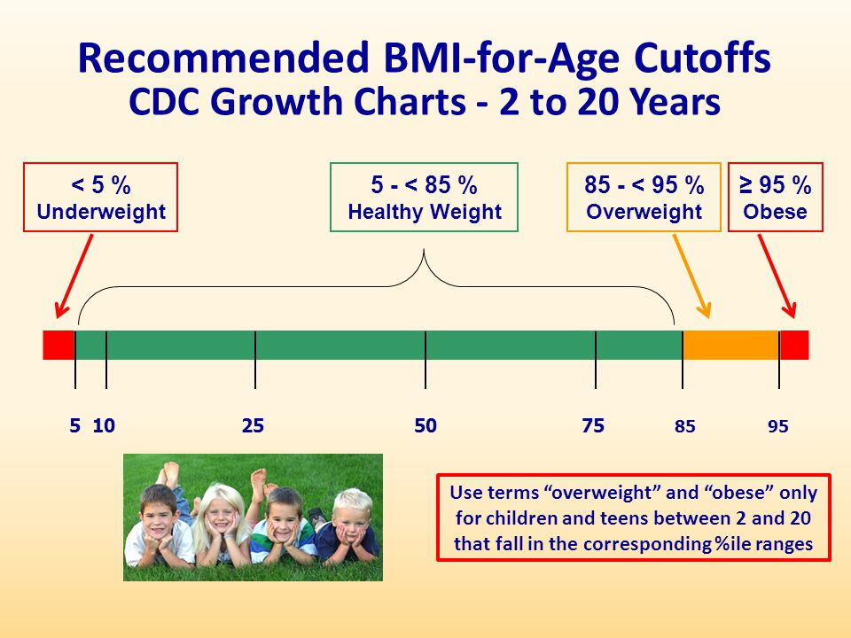 Recommended BMI-for-Age Cutoffs CDC Growth Charts - 2 to 20 Years