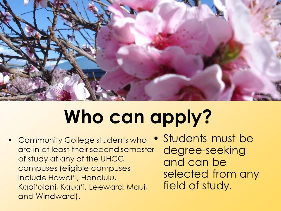 Who can apply Students must be degree-seeking and can be selected from any field of study.