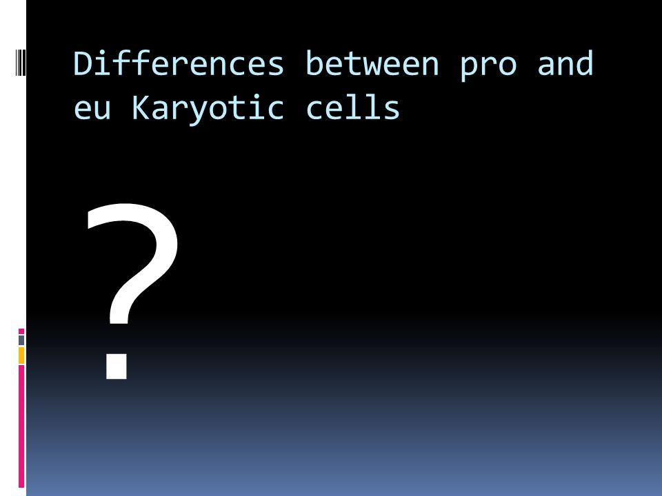 Differences between pro and eu Karyotic cells