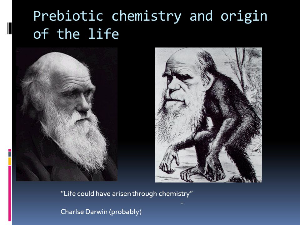 Prebiotic chemistry and origin of the life