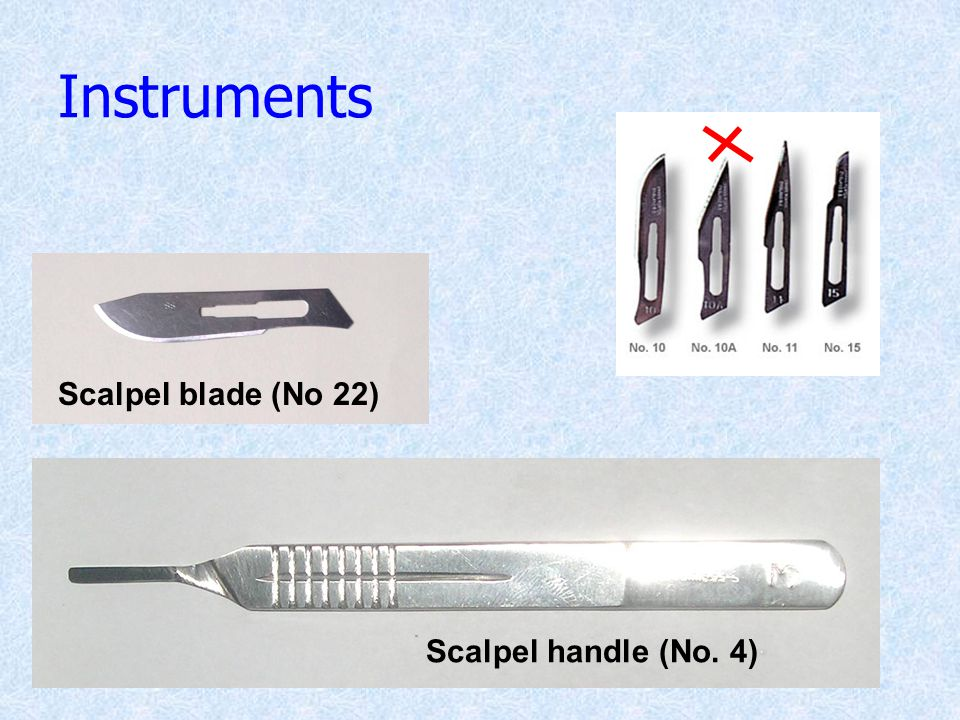 Instruments Scalpel blade (No 22) Scalpel handle (No. 4)