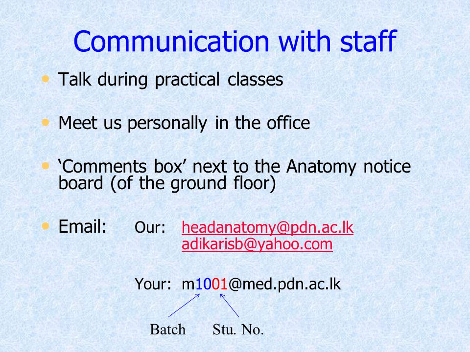 Communication with staff
