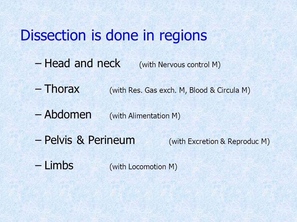 Dissection is done in regions