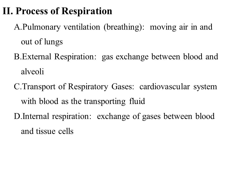 II. Process of Respiration