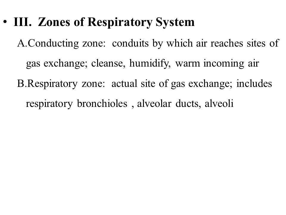 III. Zones of Respiratory System