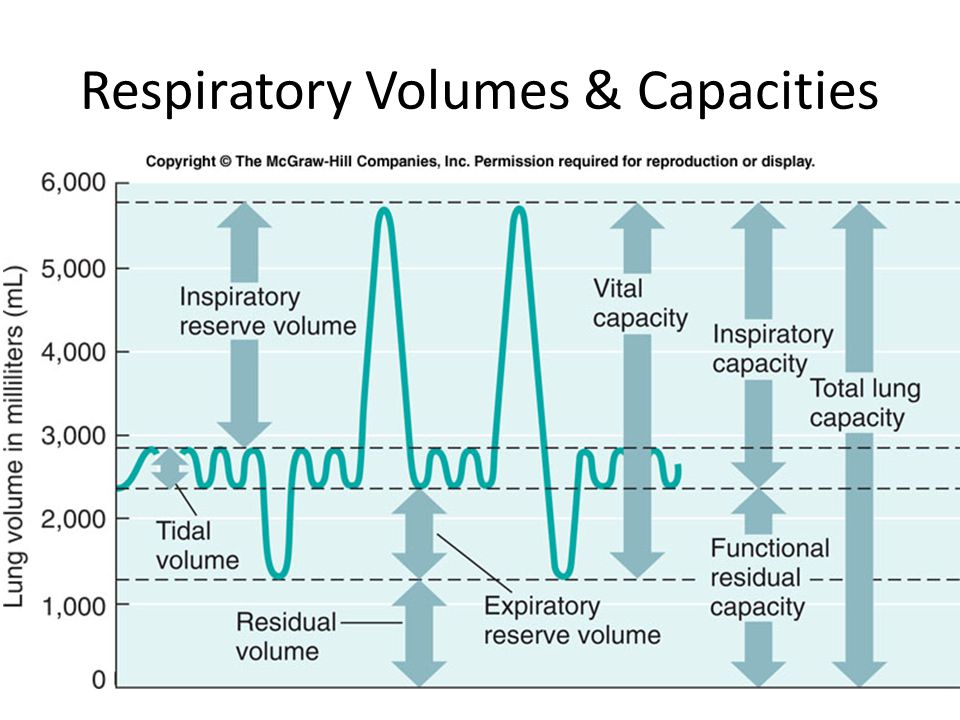 Respiratory Volumes & Capacities