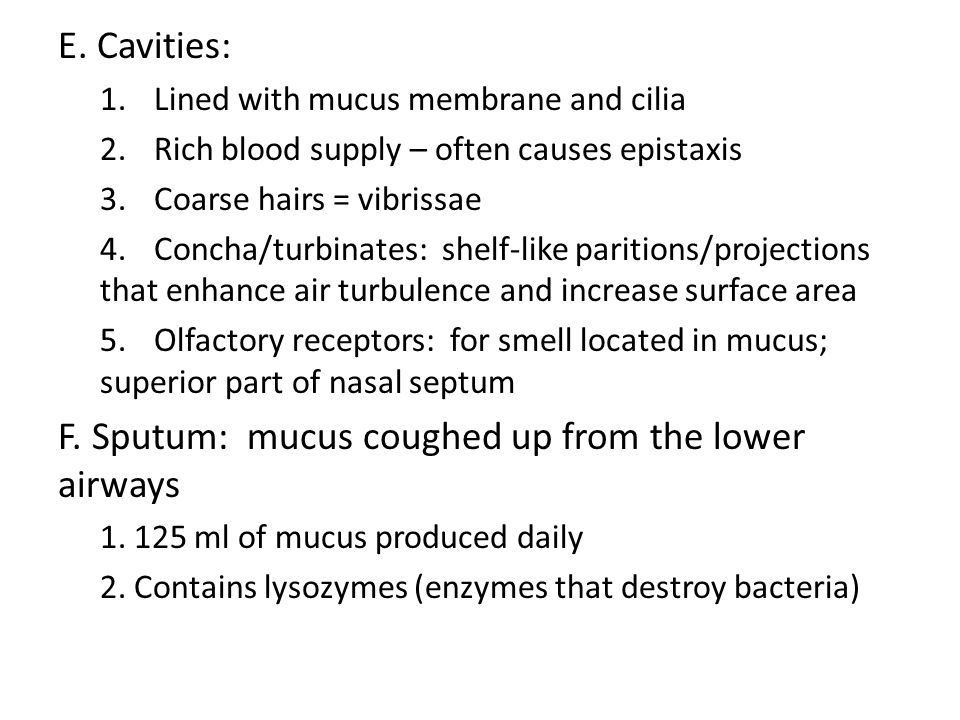 F. Sputum: mucus coughed up from the lower airways