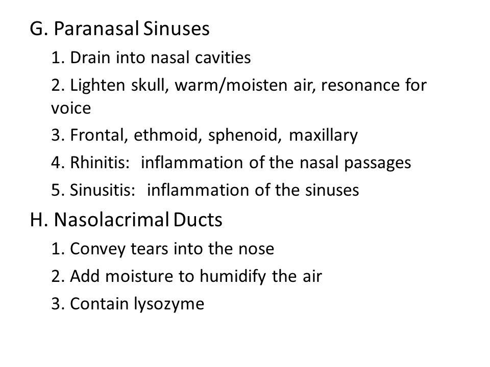 G. Paranasal Sinuses H. Nasolacrimal Ducts
