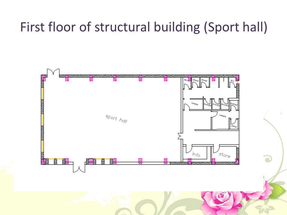 First floor of structural building (Sport hall)