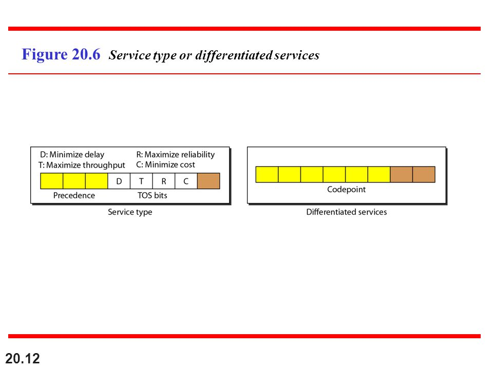 Figure 20.6 Service type or differentiated services