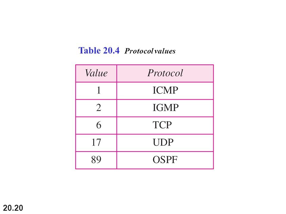 Table 20.4 Protocol values