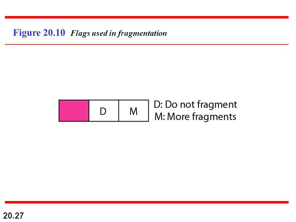 Figure 20.10 Flags used in fragmentation