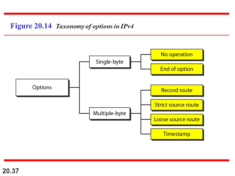 Figure 20.14 Taxonomy of options in IPv4