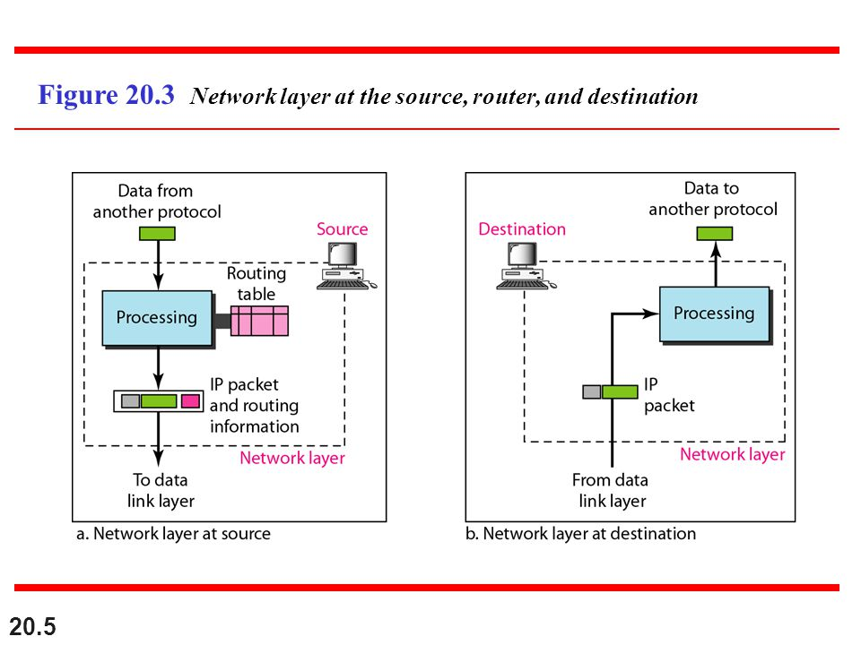 Figure 20.3 Network layer at the source, router, and destination