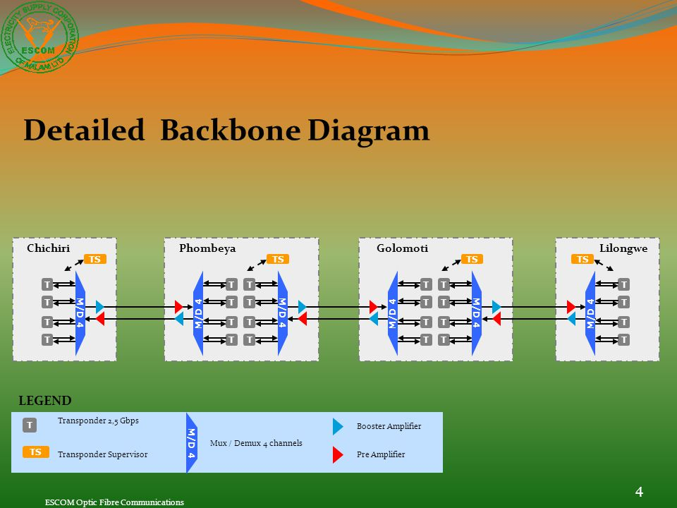 Detailed Backbone Diagram