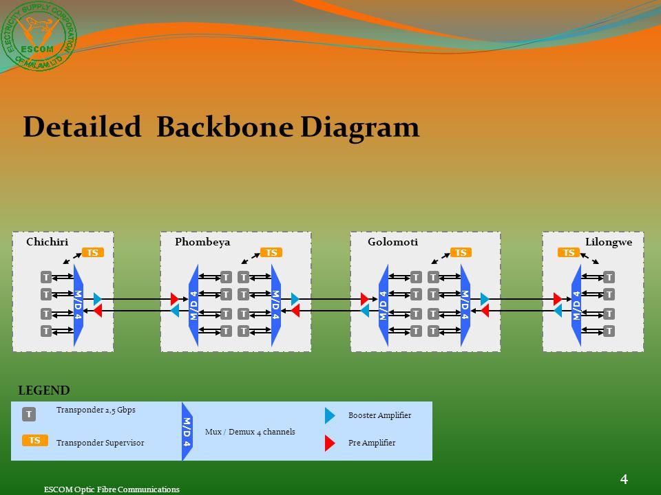 Detailed Backbone Diagram