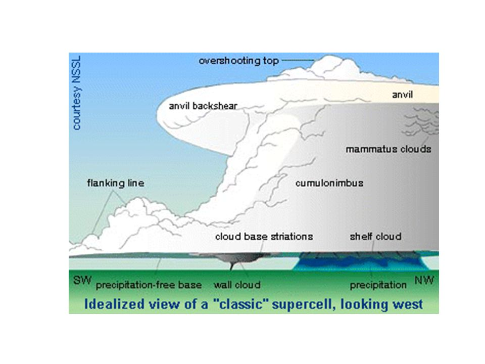 This is the standard model for a supercell, showing the backsheared anvil, overshooting top, flanking line, wall cloud, and tornado.