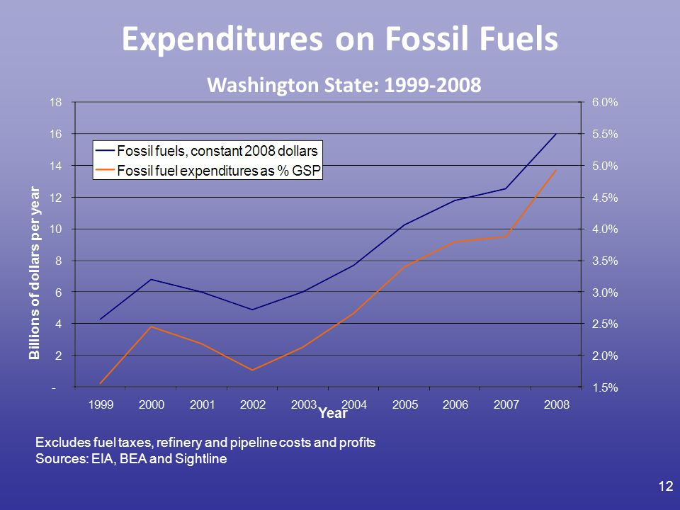 Expenditures on Fossil Fuels Washington State: 1999-2008