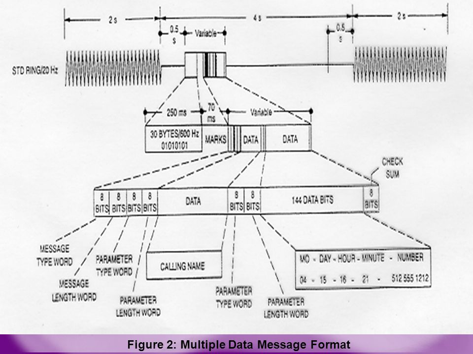 Figure 2: Multiple Data Message Format